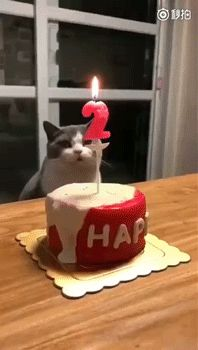 задул свечу / АйДаПрикол :)