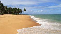 #MSC #Cruises to #Ilheus, #Brazil. #SouthAmerica #MSCCruisesUSA