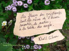 Les fleurs de Khalil Gibran