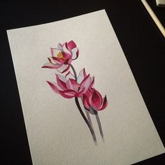 #lotus #watercolor #sashaunisex