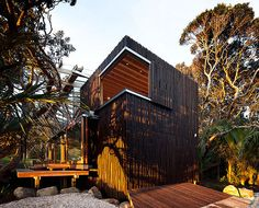 'Under Pohutukawa' House by Herbst Architects