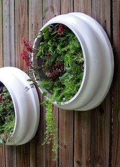 Upcycled and Elegant Round Living Wall Succulent Planters - Perfect apartment garden. via Etsy.