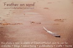 """Feather on sand"" by Cindy Garber Iverson"