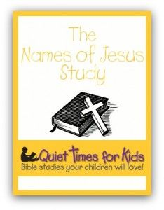 inexpensive youth bible studies