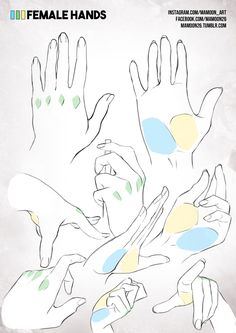 simplified anatomy 10 - female hands by mamoonart.deviantart.com on @DeviantArt