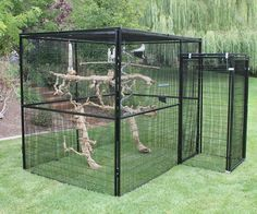 Rectangle Walk In Bird Aviary (ULTIMATE PACKAGE) #howtobuildanaviary #aviariesideas #buildaviary