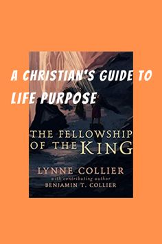 How to use your gifts and skills to serve God in ministry and your career--with an added section for those who enjoy fantasy. #christian #christianbook #lifepurpose #spiritualgifts King Book, Spiritual Gifts, Life Purpose, Ministry, Christianity, Career, Geek Stuff, Fantasy, God