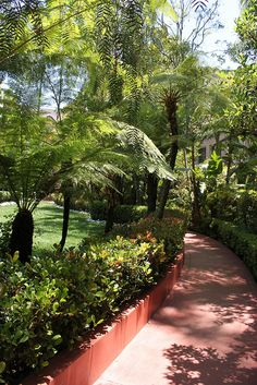gardens, The Beverly Hills Hotel Los Angeles by Corinna Witt, via Flickr