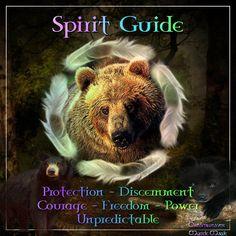 Animal Guides/Totem Animals – Page 2 Find Your Spirit Animal, Bear Spirit Animal, Spirit Bear, Animal Spirit Guides, Animal Meanings, Animal Symbolism, Bear Totem, Native American Spirituality, Spiritual Animal