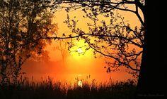 Schöner kann ein Tag nicht beginnen .............. von Danjac