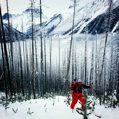 Guys Gladly Gaining Greater Ground a vertical kilometer high in Kootenay Pass with Bryan. #mountaintherapy #mountainculture #weekdaywarrior #skitouring #skinning #rmadventuremedstaff #exploreBC #enjoycanada #skibc #getoutandplay #backcountryyyc #neverstopexploring by mtndwlr