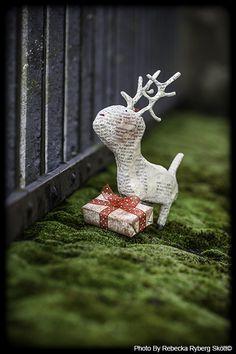 Oh deer, Merry Christmas!