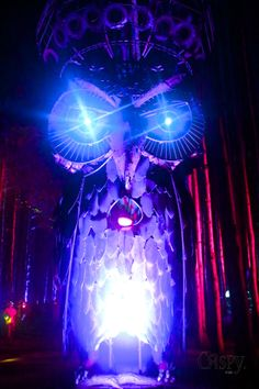 Pretty Lights Electric Forest 2013 | Electric Forest Music Festival: 2013 Photos
