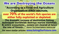 United Nations UN FAO Report Study Overfishing Fishing Boat Trawlers Techniques Destroys Destroying Oceans Seventy Percent Stop Eating Fish Species Stocks Exploited Depleted Marine Mammals Aquatic Ecosystems Deserts Go Vegan Vegetarian Health Memes, Health Diet, Vegetarian Memes, Vegan Vegetarian, Aquatic Ecosystem, Environmental Pollution, Animal Agriculture, Study Quotes, Marine Environment