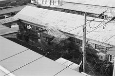 屋根 (Roof)