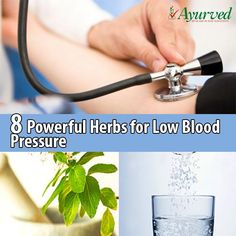 Control High Blood Pressure with 9 Effective and Herbal Herbs