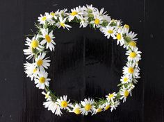 ~For when I'm feeling creative~ Floral Crown Instructions - You can do this with Real Flowers! Flower Crown Tutorial, Diy Flower Crown, Cute Crafts, Diy Crafts, Plant Crafts, Daisy Crown, Crown For Kids, Corona Floral, Idee Diy