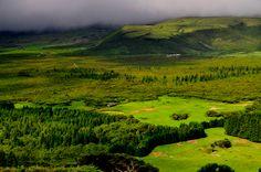 SIARAM :: O Touro Bravo na Ilha Terceira, Wild Bull Route in Terceira Island, Azores, Portugal