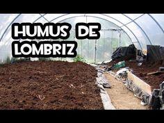 Humus de Lombriz desde cero - La Huerta de Iván - Siembra tus alimentos en el Huerto y Jardín.