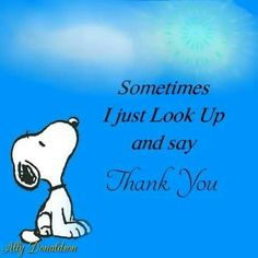 learn from yesterday live for today hope for tomorrow snoopy Charlie Brown Quotes, Charlie Brown Y Snoopy, Snoopy Love, Snoopy And Woodstock, Peanuts Quotes, Snoopy Quotes, Image Positive, Snoopy Pictures, Praise The Lords