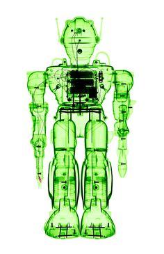 X Rayed Toys by Brendan Fitzpatrick