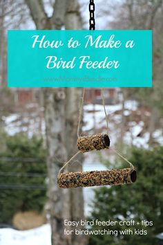 Diy Bird Feeder Craft & Bird Watching Tips For Kids