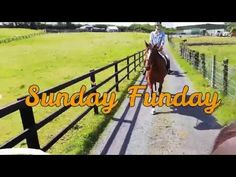 What a beautiful day we had yesterday, June Jasmine went on her first long trek and performed amazingly well. James met us at the Castle as she had. Riding Holiday, Horse Ears, What A Beautiful Day, Show Jumping, Sunday Funday, Horse Riding, Good Day, Jasmine, Castle