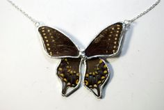 FREE SHIPPING  Real Whole Black/Blue Swallowtail Butterfly Encased in Hand Cut Glass and Soldered Pendant Necklace