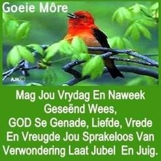 Evening Greetings, Afrikaanse Quotes, Goeie Nag, Goeie More, Day Wishes, Embedded Image Permalink, Videos Funny, Daily Quotes, Good Morning