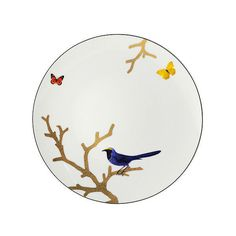 Bernardaud Aux Oiseaux Dinner Plate (185 AUD) ❤ liked on Polyvore featuring home, kitchen & dining, dinnerware, japanese dinner plates, gold tree, bird dinnerware, gold dinnerware and japanese trees