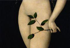 Lucas Cranach The Elder • Eve 1528 (Detail)