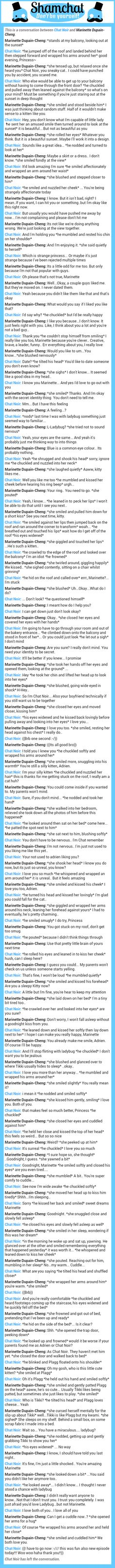 A conversation between Marinette Dupain-Cheng and Chat Noir