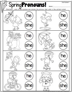 Spring Pronouns Freebies! 3 worksheets!