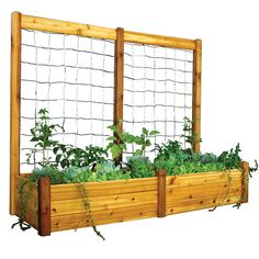 Have to have it. Gronomics 34L x 95W x 19H in. Raised Garden Bed with Trellis Kit - $549.99 @hayneedle