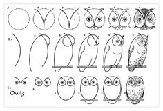 The graphics fairy owl drawing tutorial Drawing Websites, Drawing Lessons, Drawing Techniques, Art Lessons, Drawing Guide, Drawing Ideas, Drawing Pictures, Owl Pictures, Painting & Drawing
