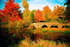 Sat, Oct AM: The description of the event, Fall Hike Through Parc National du Mont-Saint-Bruno-(Les Lacs km-LEVEL is available only to members. Parc National, National Parks, Autumn Park, Parcs, Quebec, Canada, Beautiful Landscapes, Saint, Beautiful Places