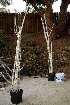 slingram's DIY birch branch altar (arch) for wedding