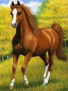 The Part Walking Horse Registry was started to fill a need for those breeding other registered breeds to Tennessee Walking Horses. Pretty Horses, Beautiful Horses, Animals Beautiful, Painted Horses, Horse Drawings, Animal Drawings, Walking Horse, Horse Artwork, Equine Art