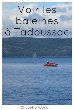 10 choses à faire à Tadoussac