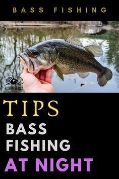Here's a great list of the 10 of the best bass fishing tips for bass fishing at night. These night bass fishing tips will get you into the largemouth and smallmouth bass at night when you have the lake or pond all to yourself. fishing tips Bass Fishing Tips, Crappie Fishing, Sea Fishing, Carp Fishing, Fishing Lures, Fishing Tricks, Fishing Tackle, Women Fishing, Fishing Rods