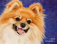 Watercolor on Aquabord - MAC a perky Pomeranian painted by Denice Cyrex Ducote