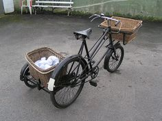 pet sidecar   bike riding with small dog? - Pet Forums Community
