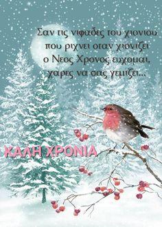 Greece, Bird, Animals, Greece Country, Animales, Animaux, Birds, Animal, Animais