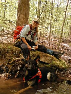 SAR Dog & Handler taking a break--depending upon how we do with bitework, we may /may not pursue SAR Military Working Dogs, Military Dogs, Police Dogs, German Shepherd Dogs, German Shepherds, Search And Rescue Dogs, War Dogs, Schaefer, The Fox And The Hound