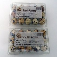 Turnbull FarmsTM Fresh Gourmet Quail Eggs - 2 Dozen (24 eggs)
