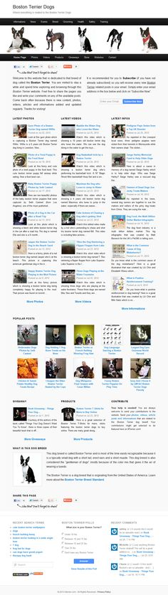A great place for anything related to the small Boston Terrier dog breed. Photos, videos, informations... >> Boston Terrier Website --> www.bterrier.com