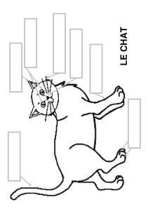 Le chat - la maternelle de Camille