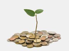 Dịch vụ tư vấn luật doanh nghiệp: Doanh nghiệp tăng lãi hàng chục lần trong nửa đầu ...
