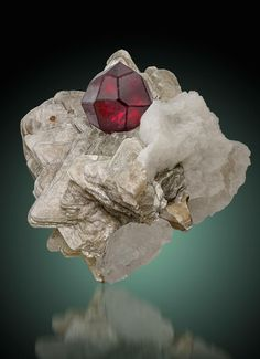 Stunning deep red spessartine garnet in perfect composition of muscovite and albite from Apo Ali Gun, Braldu Valley, Skardu District, Gilgit-Baltistan, Pakistan. Minerals And Gemstones, Rocks And Minerals, Rock Collection, Mineral Stone, Rocks And Gems, Stones And Crystals, Creations, Gilgit Baltistan, Painting