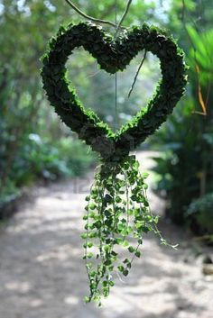 ~ Hanging Vine Heart ~ This would be beautiful hanging on a porch....